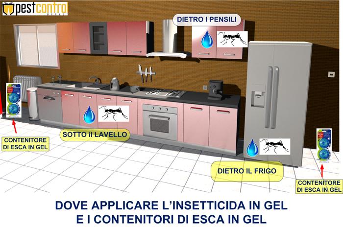 Maxforce Quantum formiche facile applicazione in casa