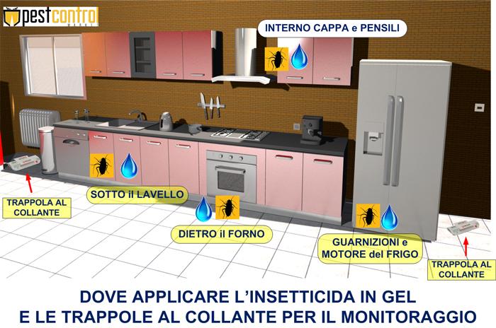 guida applicazione solfac gel per scarafaggi
