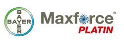 Nuovo Bayer Maxforce Platin insetticida gel professionale per blatte e scarafaggi