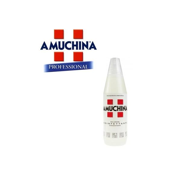 AMUCHINA SOLUZIONE DISINFETTANTE CONCENTRATA 1 litro